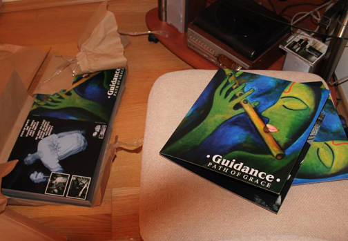 Guidance - Path of Grace LP