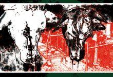 xRepentancex - Discography 2xLP